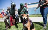 Best Friends Pet Super Adoption