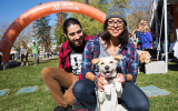 2016 Strut Your Mutt in Salt Lake City