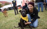Pet super adoption event in Utah