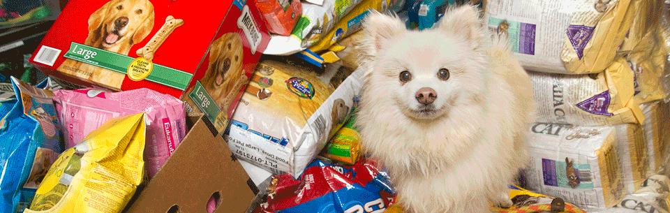 pet food pantry